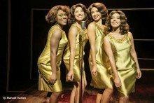 Tina The Musical
